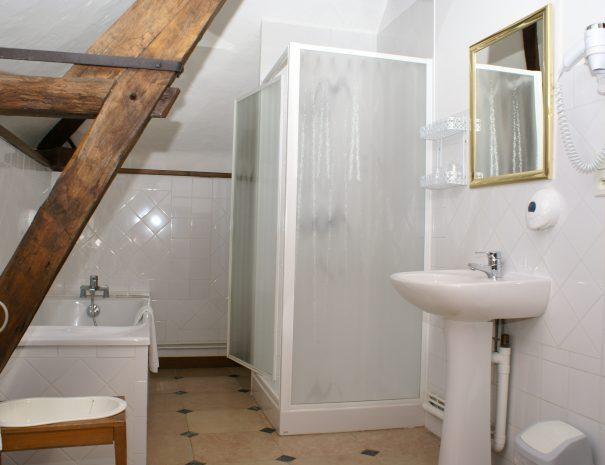 Salle-de-bain de la chambre Platane